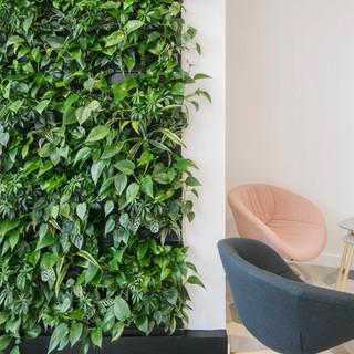 Indoor Living Walls from Arti Green.jpg