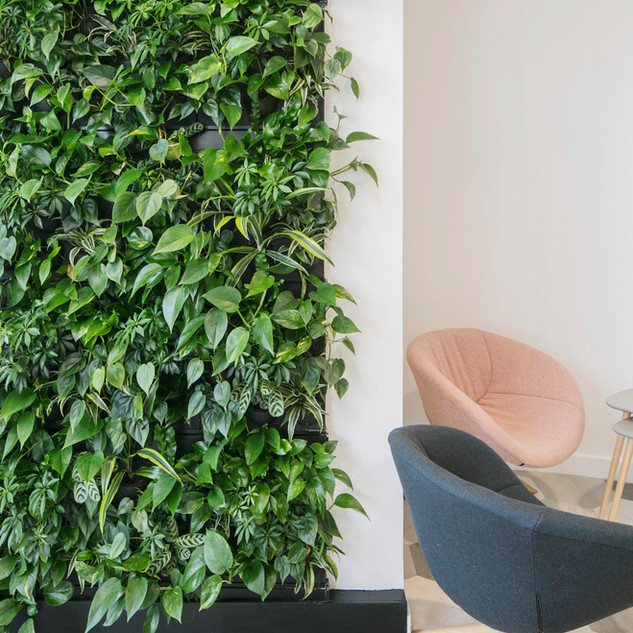 Indoor Living Walls from Arti Green.jpg