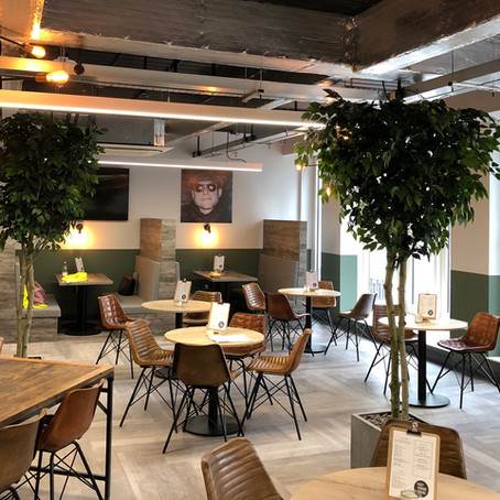 Artificial Trees For Avenue HQ Leeds