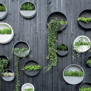 Outdoor Wall Planters Filled with Live Planting