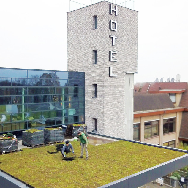 Green Roofs For Commercial Buildings
