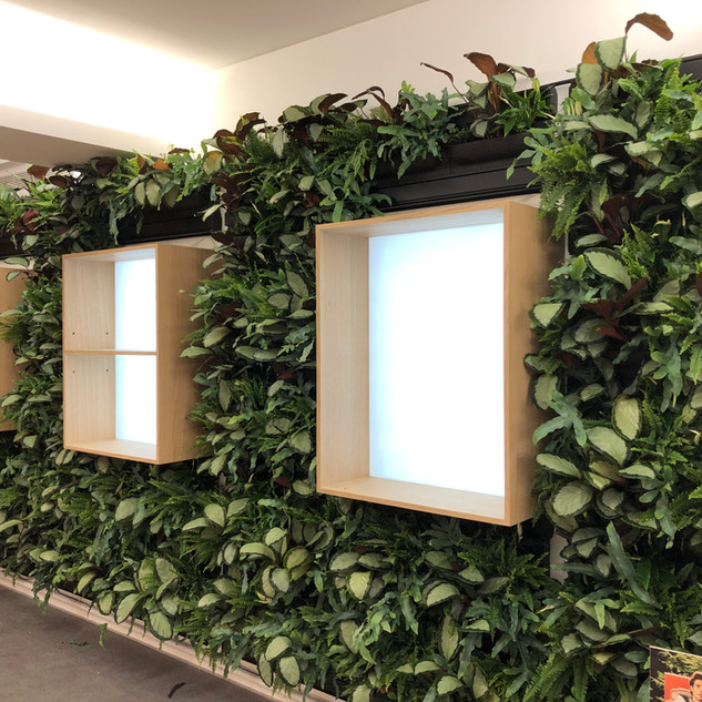 Indoor Living Wall For Office Interior