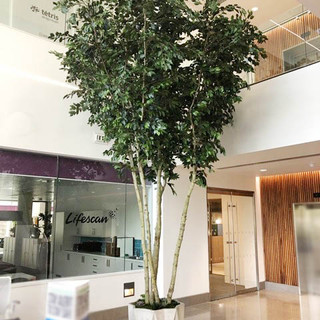 5m Artificial Office Trees.jpg