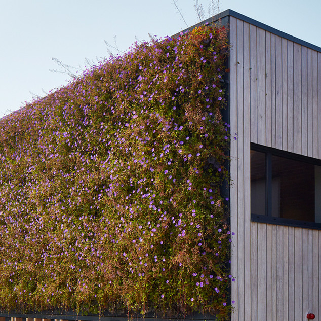 LivePanel Outdoor Living Walls.jpg