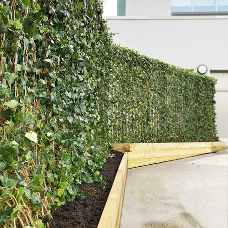 Green My School Project - Pollution Reducing Screens for Pikefold School Manchester
