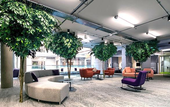 Interior Landscaping by Arti Green Ltd