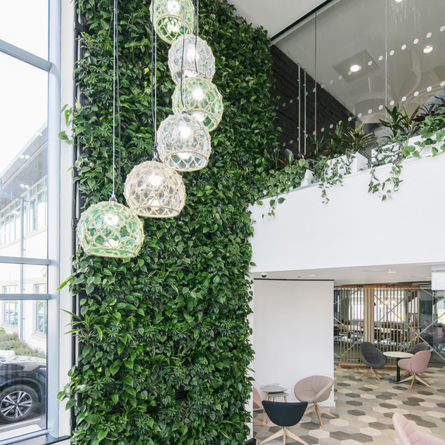 Indoor Reception Area Living Wall
