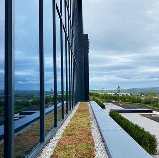 Sedum Green Roof At Eurogarages HQ Lanca