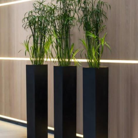 Tall Square Reception Planters In Black Fibrestone