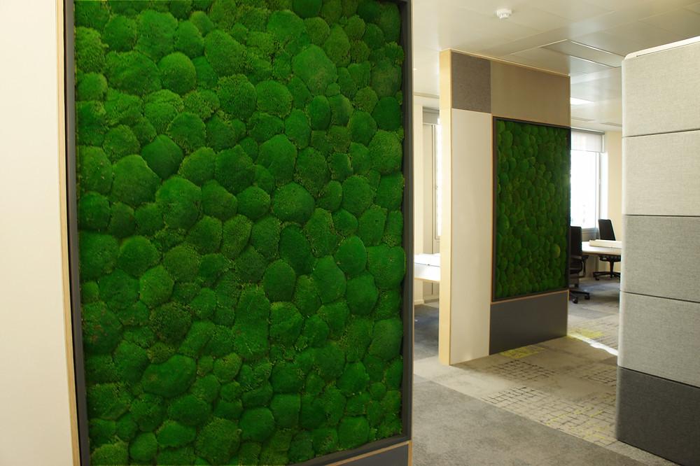 Biophilic Moss Walls UK