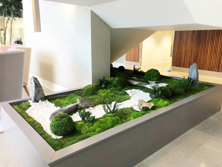 Japanese Inspired Zen Garden Planter For A Modern Office Interior