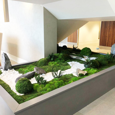 Japanese Inspired Zen Garden Planter For A Modern Office Interior
