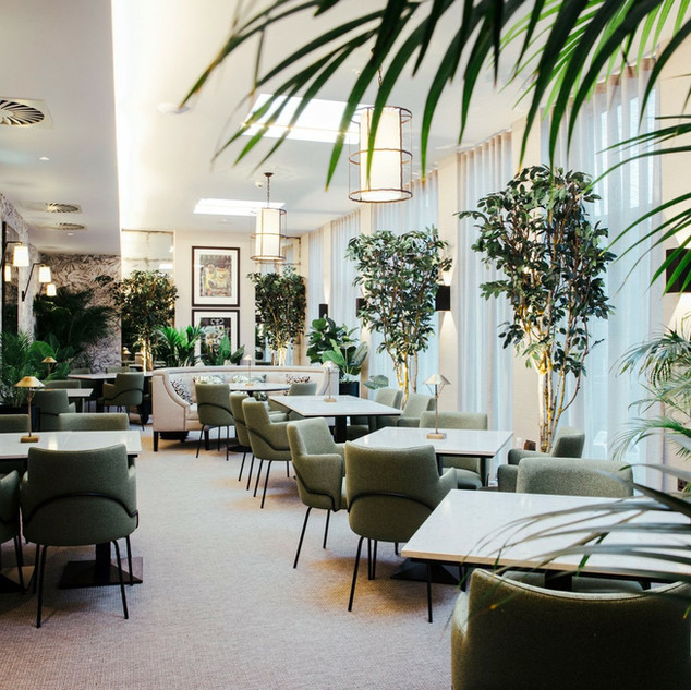 Artificial Trees & Palnts For The Chester Hotel