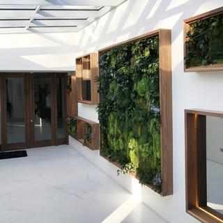 Biophilic interior moss wall residentil