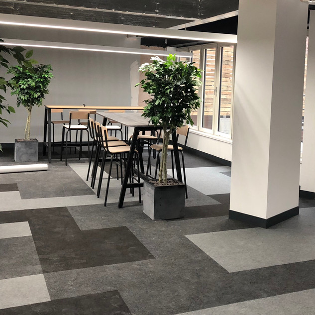Artificial trees for a Leeds office interior