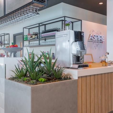 Large Commercial Restaurant Planters.jpg