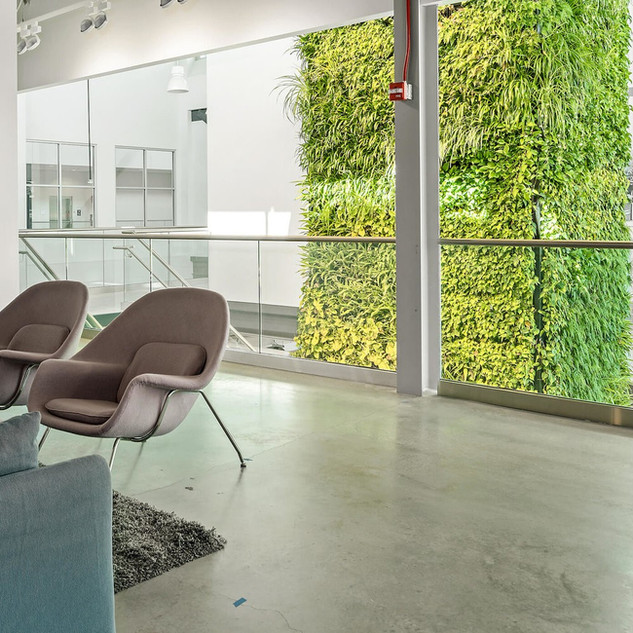 Live Panel Living Wall System UK