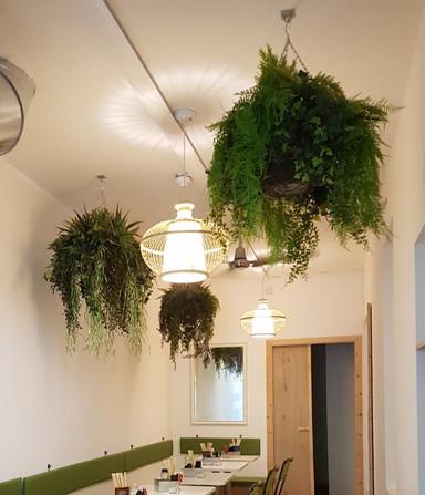 Artificial Greenery Hanging Baskets