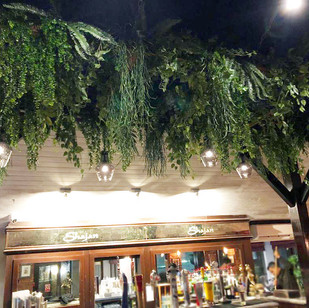 Ceiling plants feature for an Indian restaurant in Lancashire