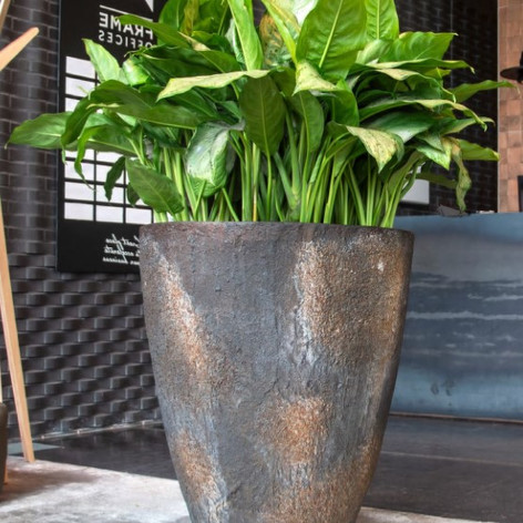 Large Textured Oyster Planter