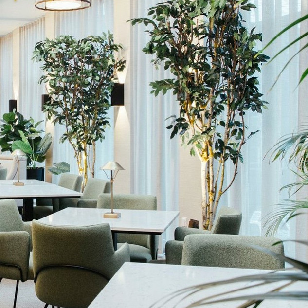 Artificial Green Trees For a Boutique Ho