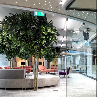 Artificial Office Trees