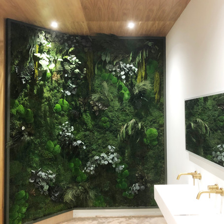 Preserved Forest Foliage Green Wall at Nature Republic