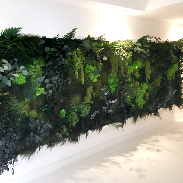 Preserved Moss and Plant Wall Frame by A