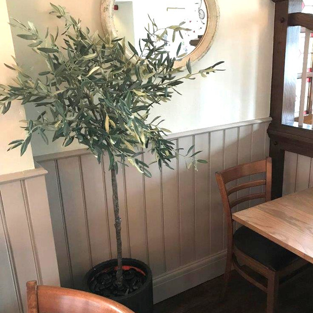 Restaurant Artificial Olive Trees