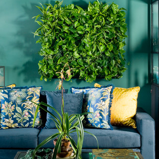 Live Panel Pack Indoor Living Wall