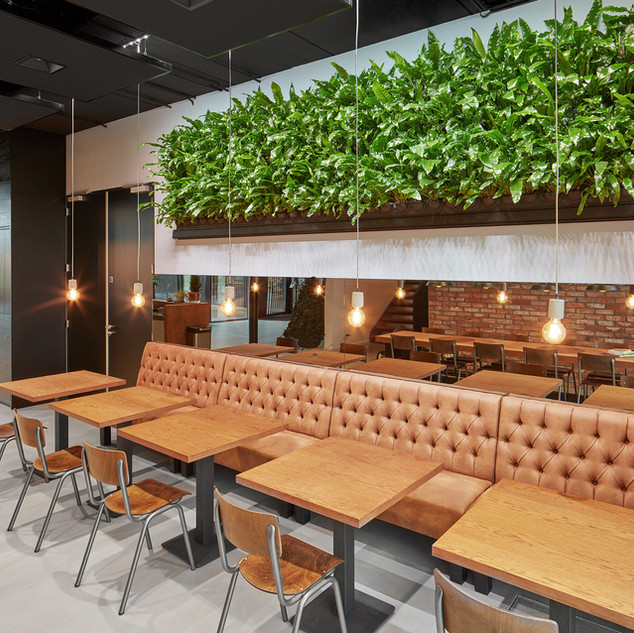 Biophilic Restaurant Living Wall