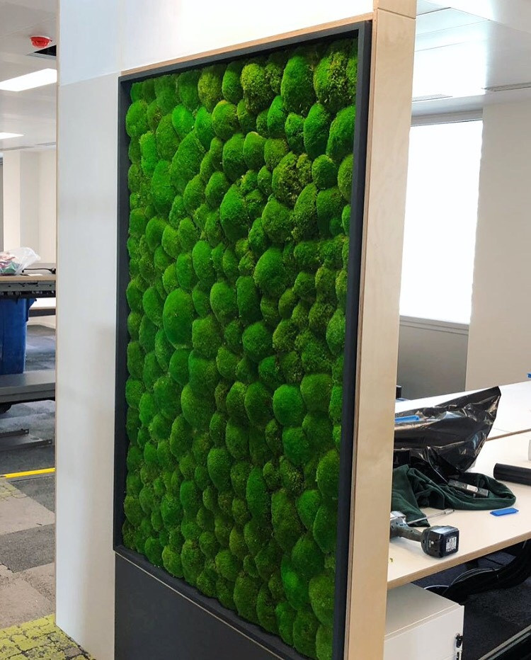 Moss walls by Arti Green Ltd installed at the BBC