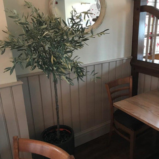 Artificial Potted Olive Trees
