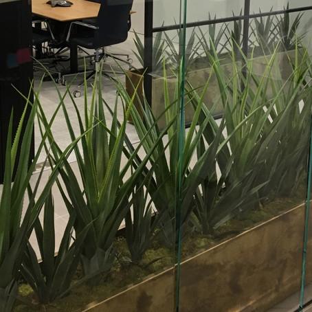 Artificial Office Plants London