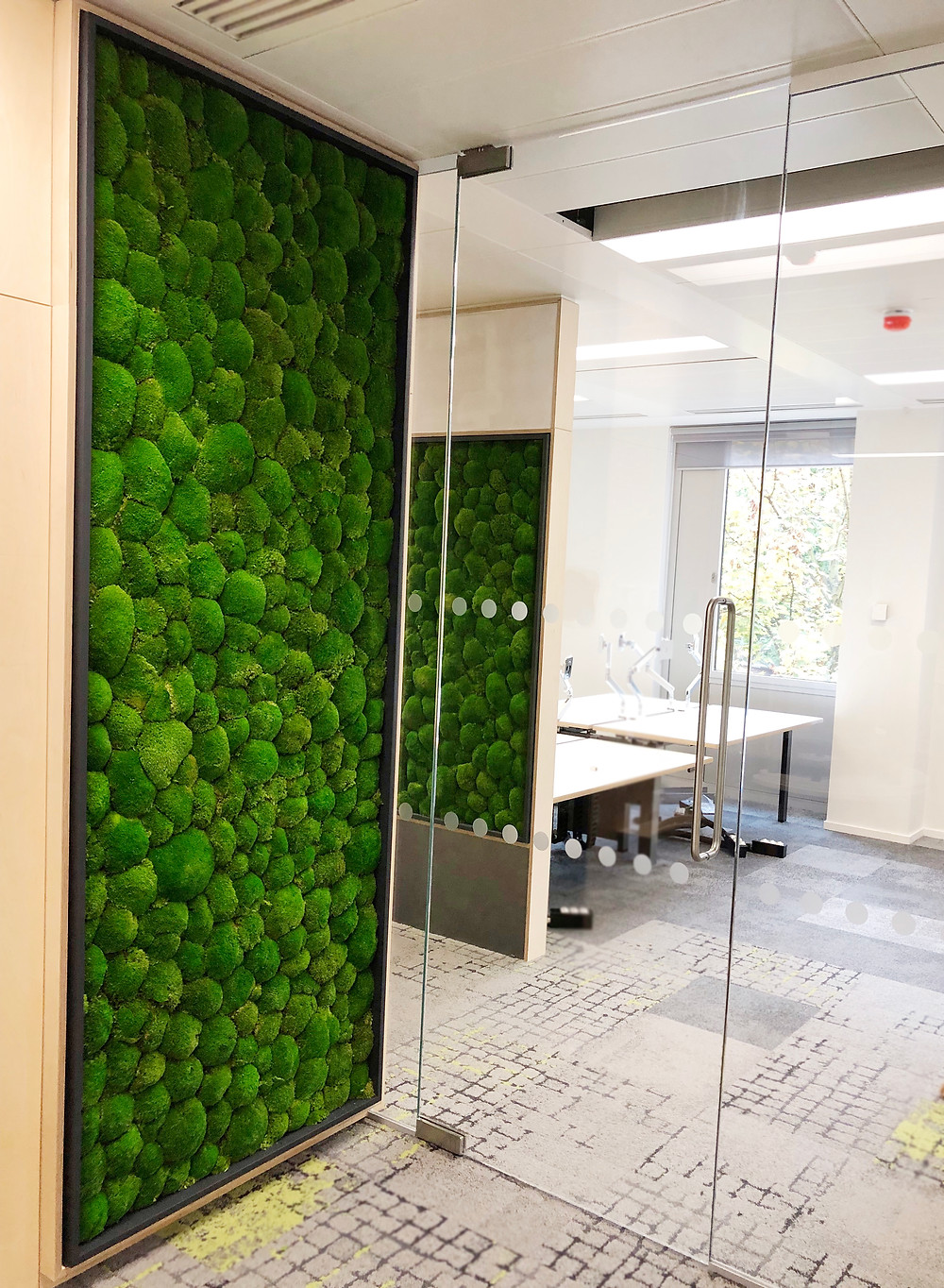 Biophilic preserved moss walls installed at the new BBC office