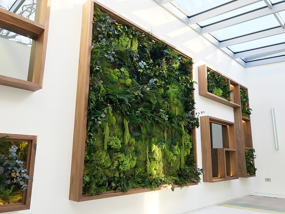 Biophilic Design Preserved Plant Wall