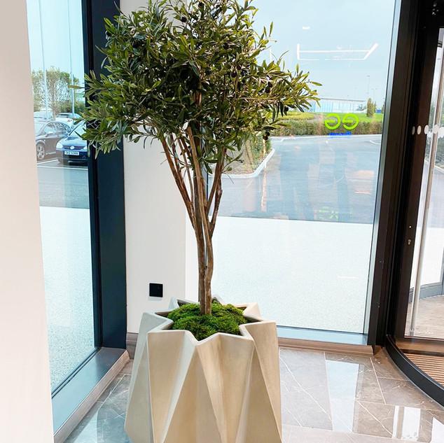 Geometric Concrete Office Reception Entr