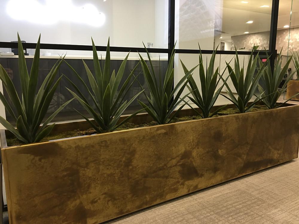 Artificial Office Plants Installation