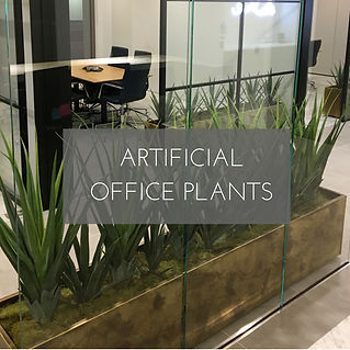 Artificial Office Plants