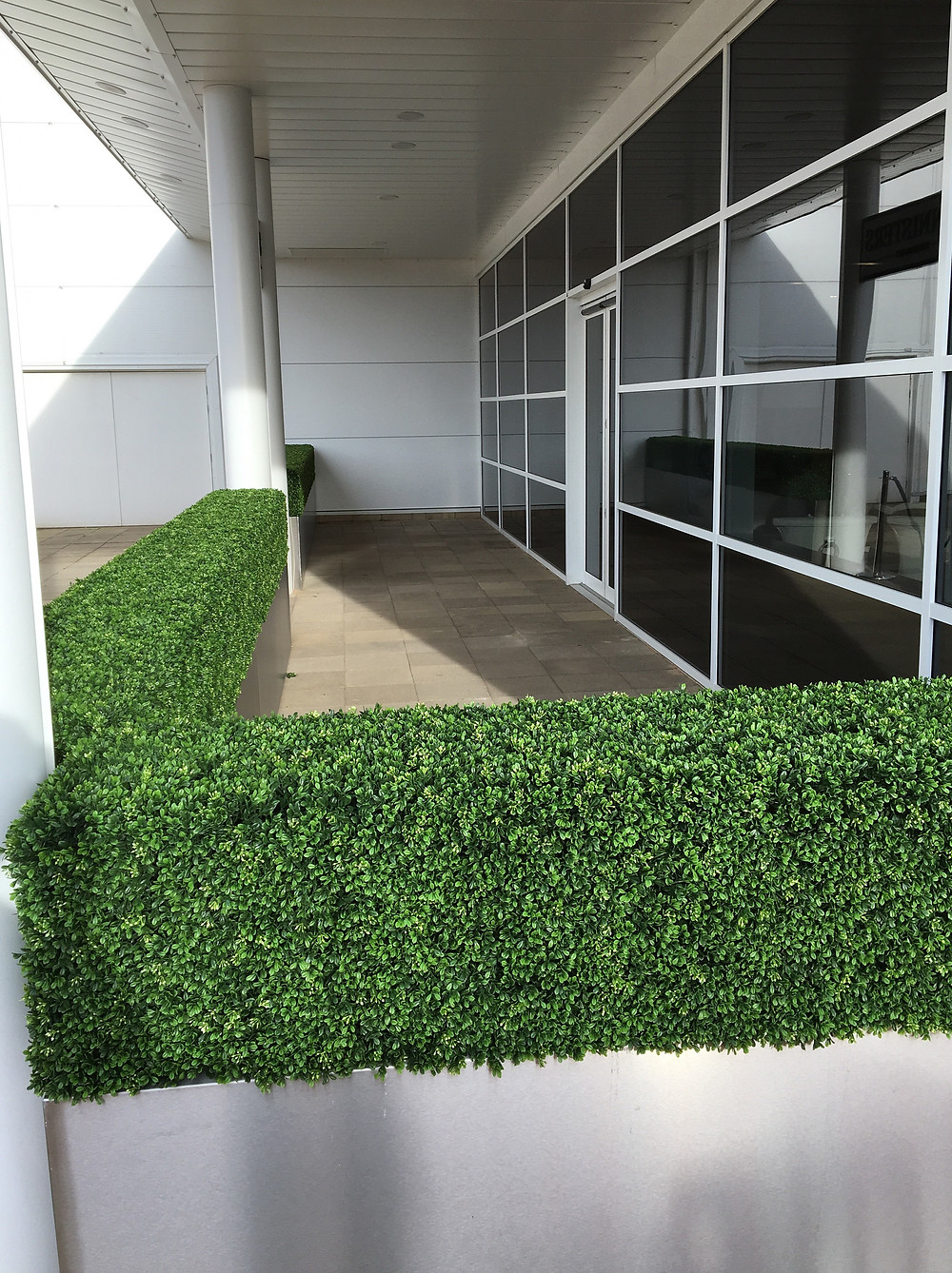 Commercial artificial boxwood hedges
