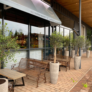 Olive Trees for a Restaurant Exterior