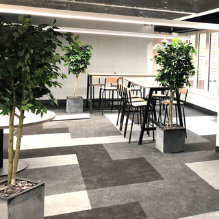 Artificial Green Trees for a Manchester