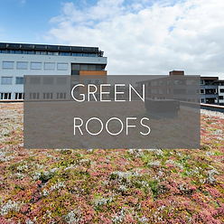 Green Roofs creating green urban spaces