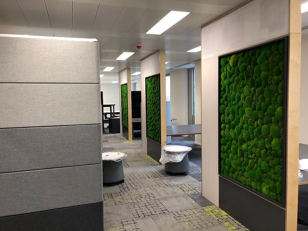 Bun moss walls by Arti Green Ltd