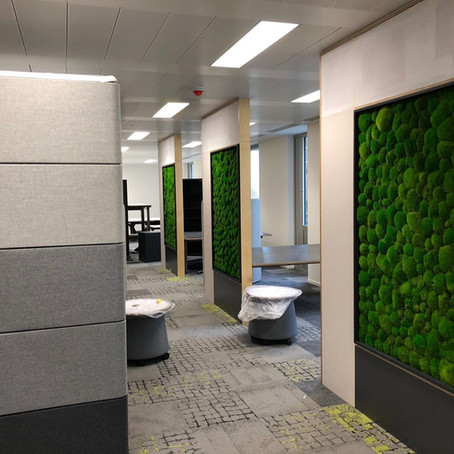 Biophilic Moss Walls For The BBC Lighthouse Building