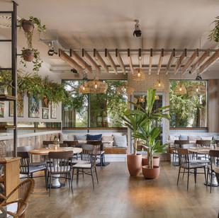 Restaurant planting design and installation