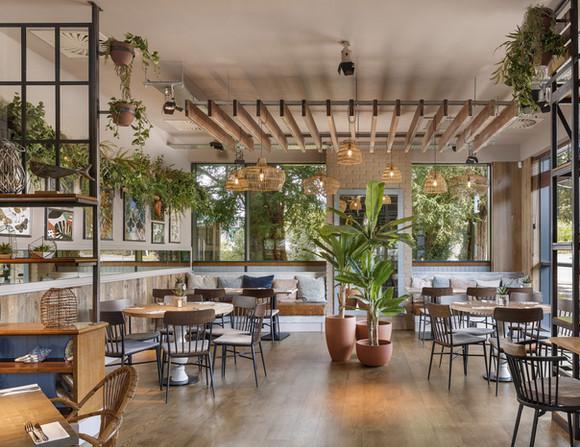 Restaurant planting design and installat