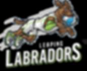 TEAM-LOGOS_0005_Layer-6.png