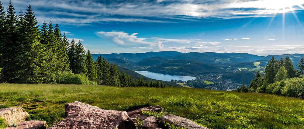 Die besten MTB Trails Schwarzwald