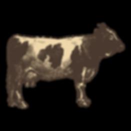 Schweizer Fleich Kuh